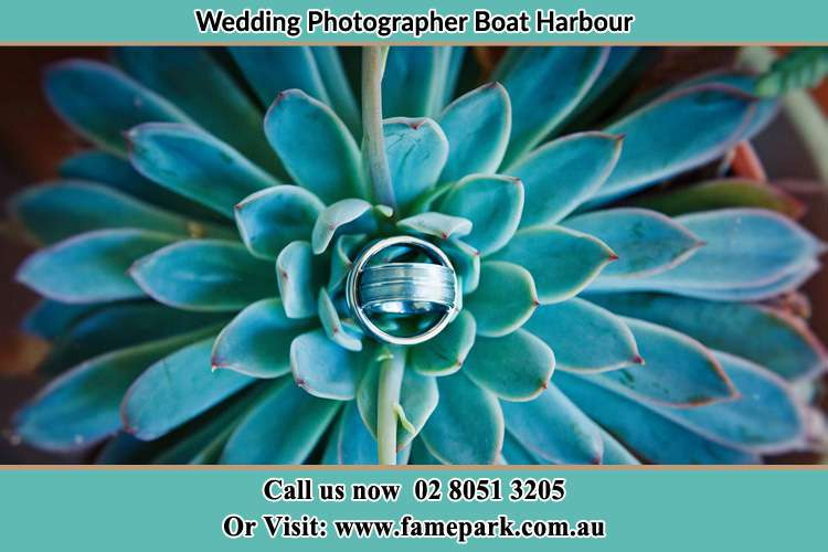 Photo of the wedding ring design at the top of the plant Boat Harbour NSW 2316