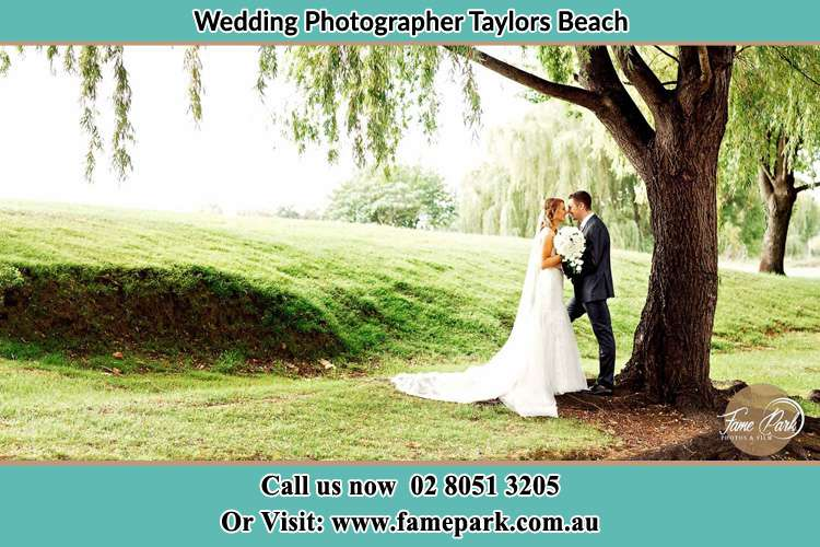 Photo of the Bride and the Groom kissing under the tree Taylors Beach NSW 2316
